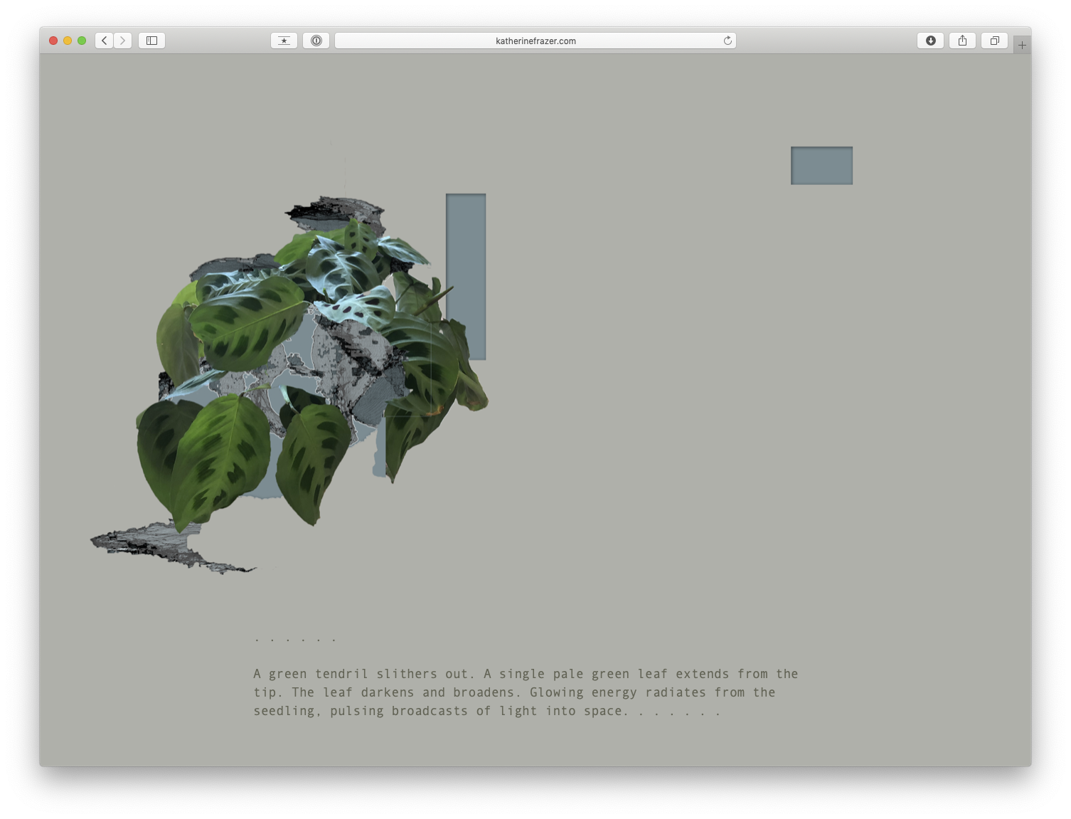 a screenshot of a browser on a simple website. a manipulated image of a plant appears alongside text